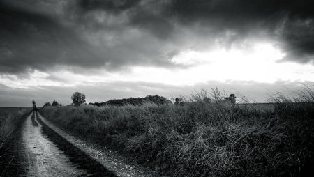 Field Path BW